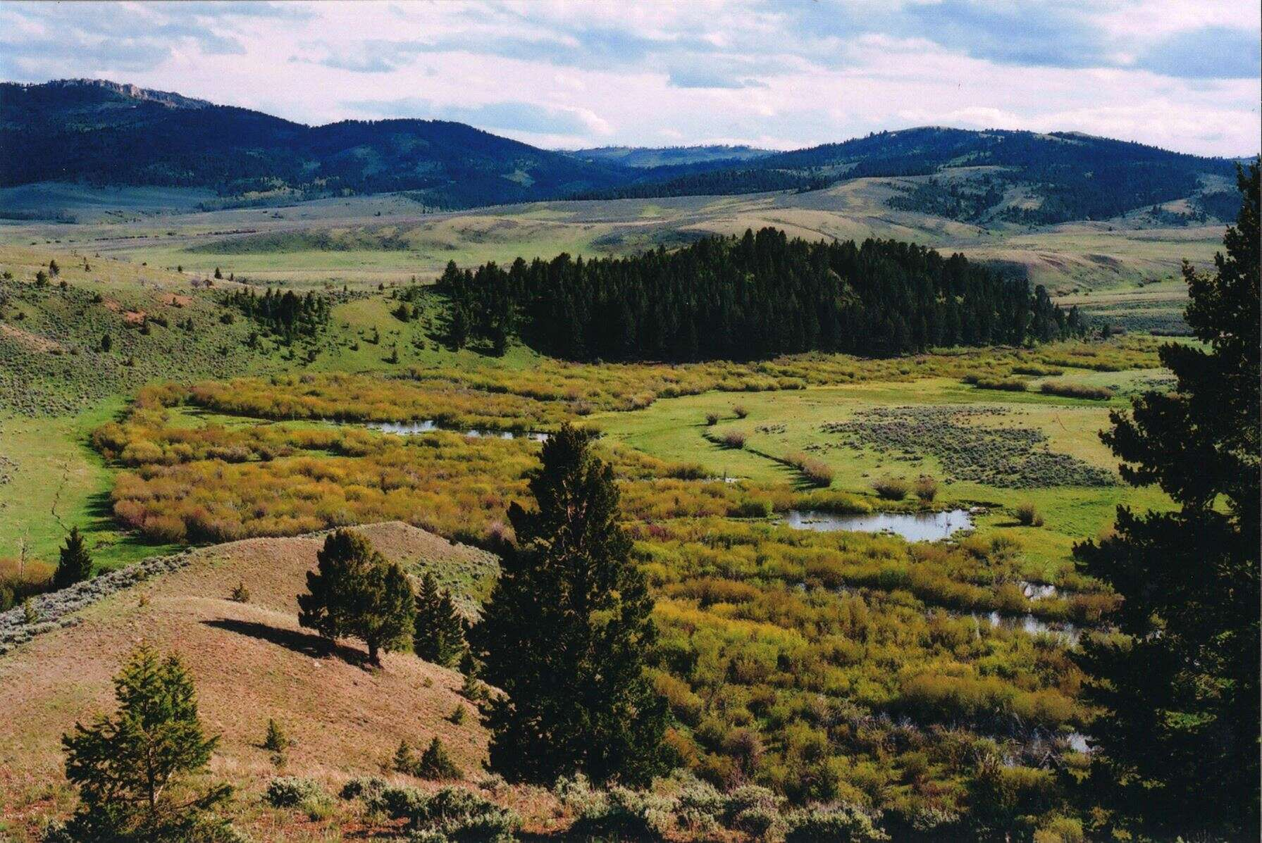 Land for Sale at Sherlock Creek Townsend, Montana 59644 United States