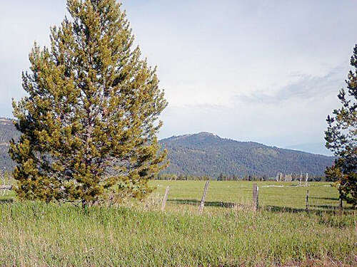 Additional photo for property listing at Tbd Schultz Road  Donnelly, Idaho 83615 United States