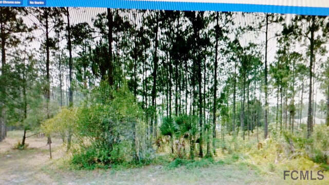 Real Estate for Sale, ListingId:38426640, location: 7 Kashmir Trail Palm Coast 32137