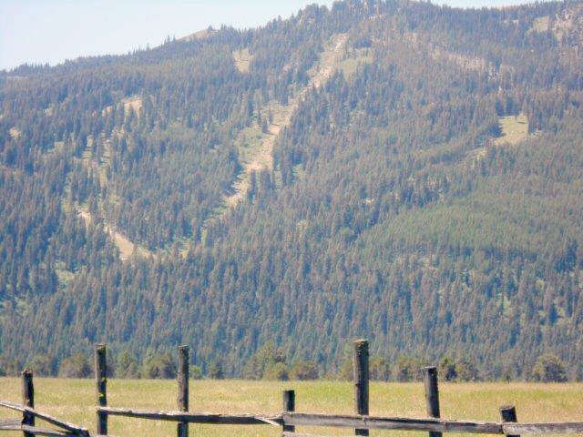 Additional photo for property listing at Tbd Tamarack Falls Road  Donnelly, Idaho 83615 United States