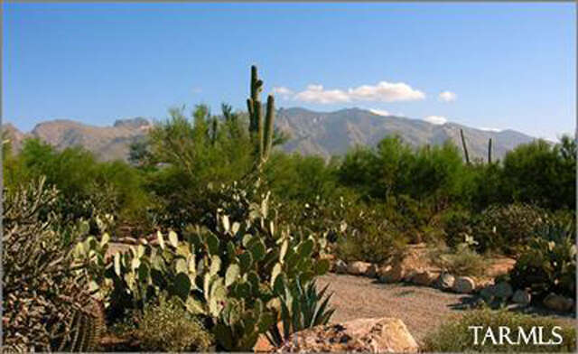 Land for Sale at 4848 W Camino De Manana Tucson, Arizona 85742 United States