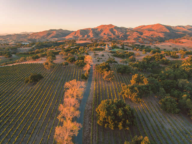 Single Family for Sale at 6903 Foxen Canyon Rd Los Olivos, California 93441 United States