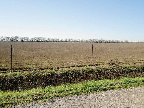Home Listing at 0 COUNTY ROAD 60, ROSHARON, TX