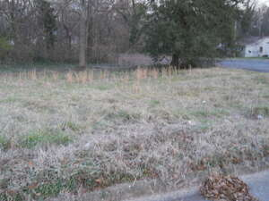 Land for Sale, ListingId:37317998, location: 000 CALVARY STREET Shelby 28150