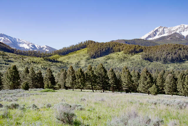 Land for Sale at Tbd Jack Creek Road Big Sky, Montana 59716 United States