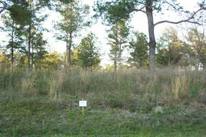 Land for Sale, ListingId:34364641, location: Lot 12 Sweetwater Moultrie 31776