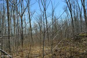 Land for Sale, ListingId:41612129, location: KIRKOF ROAD Westminster 21158
