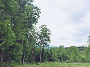 Featured Property in Lyndon, VT 05849