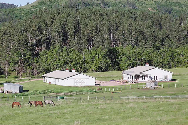 Investment for Sale at Oak Creek Road Aladdin, Wyoming 82710 United States