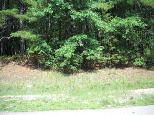Land for Sale, ListingId:35038798, location: 0 OAK MOUNTAIN ESTATES Waverly Hall 31831