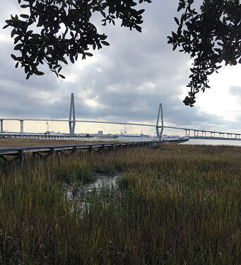 Investment for Sale at Lot 5 On The Harbor Mount Pleasant, South Carolina 29464 United States