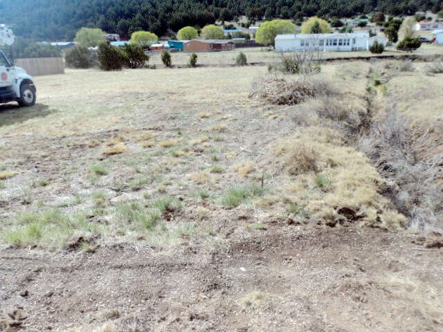 Real Estate for Sale, ListingId:44286897, location: Lot 3 LITTLE BIG HORN RD Ruidoso 88345