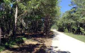 Featured Property in McAlpin, FL 32062
