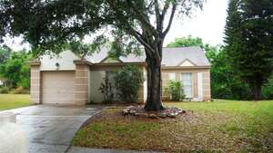 Featured Property in Palm Harbor, FL