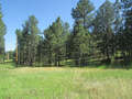 Real Estate for Sale, ListingId:44415706, location: Lot 2 Buckhorn Mt Est Drive Custer 57730