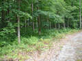 Real Estate for Sale, ListingId:46632019, location: TBD Woodview Drive Bruceton Mills 26525