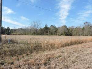 Land for Sale, ListingId:49612064, location: 16 CANDLER COURT Hahira 31632