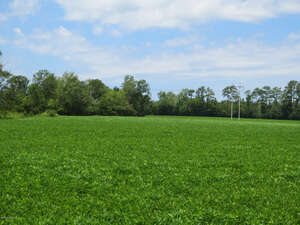 Land for Sale, ListingId:31901980, location: TBD Newport Loop Road Newport 28570