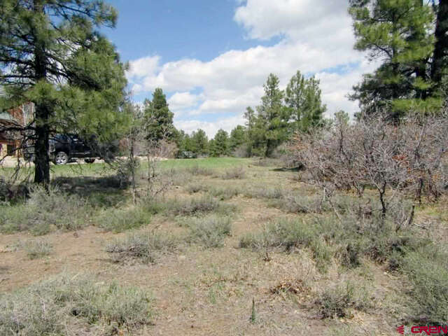 Real Estate for Sale, ListingId:44959316, location: 114 Caleta Place Pagosa Springs 81147