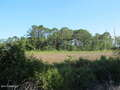 Real Estate for Sale, ListingId:45886421, location: 1 Marshland Road Hilton Head Island 29926