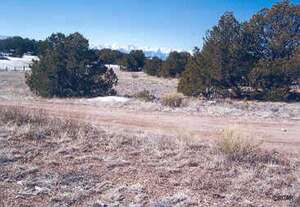 Land for Sale, ListingId:40935281, location: 578 Navajo Drive Canon City 81212
