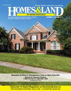 HOMES & LAND Magazine Cover. Vol. 22, Issue 06, Page 22.