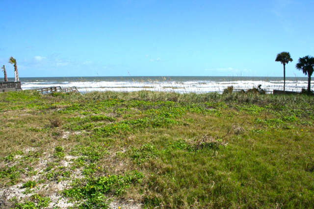 Land for Sale at 4741 S Atlantic Avenue Ponce Inlet, Florida 32127 United States