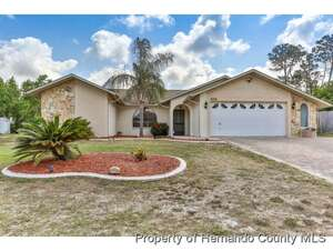 Real Estate for Sale, ListingId: 38616779, Spring Hill, FL  34606