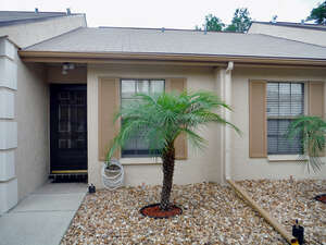 Featured Property in Holiday, FL 34690
