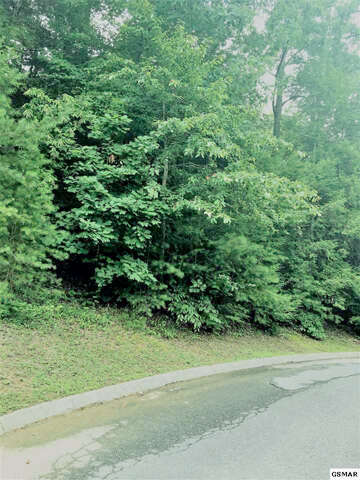 Real Estate for Sale, ListingId:53255981, location: Lot 217 GOLDEN EAGLE Pigeon Forge 37863