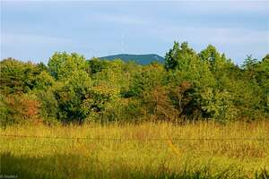 Land for Sale, ListingId:35434405, location: 1342 Off Grassy Knob Road Pilot Mtn 27041