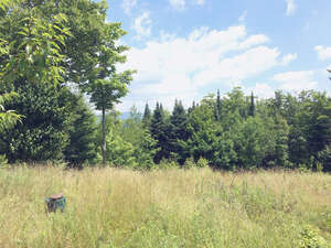 Featured Property in Westmore, VT 05860