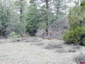 Real Estate for Sale, ListingId:46845748, location: 561 Gun Barrel Road Pagosa Springs 81147