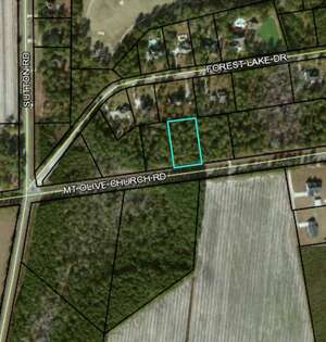 Land for Sale, ListingId:63017785, location: 189 Mt Olive Church Road Tifton 31794