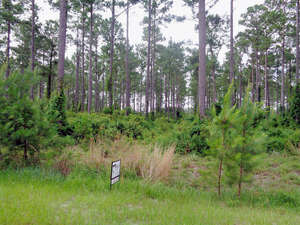 Land for Sale, ListingId:52218818, location: Lot 35 Marshway Townsend 31331