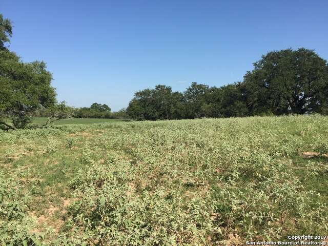 Land for Sale at 41.255 Ac La Vernia Rd St. Hedwig, Texas 78152 United States