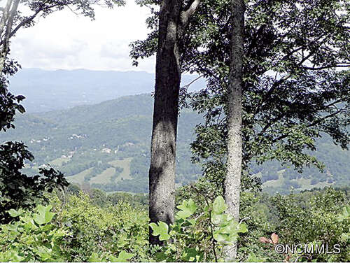 Land for Sale at 1300 Elk Mountain Scenic Highway Asheville, North Carolina 28804 United States