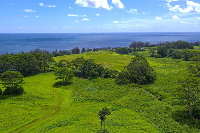 Land for Sale at Old Railroad Way Pepeekeo, Hawaii 96783 United States