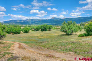 Real Estate for Sale, ListingId: 39614439, Mancos, CO  81328