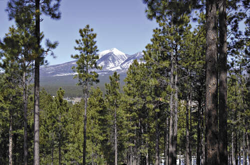 Land for Sale at 2307 N Kramer St Flagstaff, Arizona 86004 United States