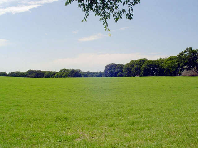Land for Sale at 14920 Cr 192 Tyler, Texas 75703 United States