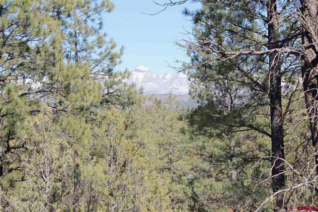 Real Estate for Sale, ListingId:44614578, location: 45 La Tierra Court Pagosa Springs 81147
