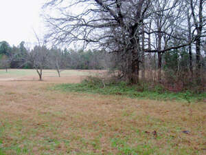 Land for Sale, ListingId:37659476, location: Brown Lane Whitehouse 75791