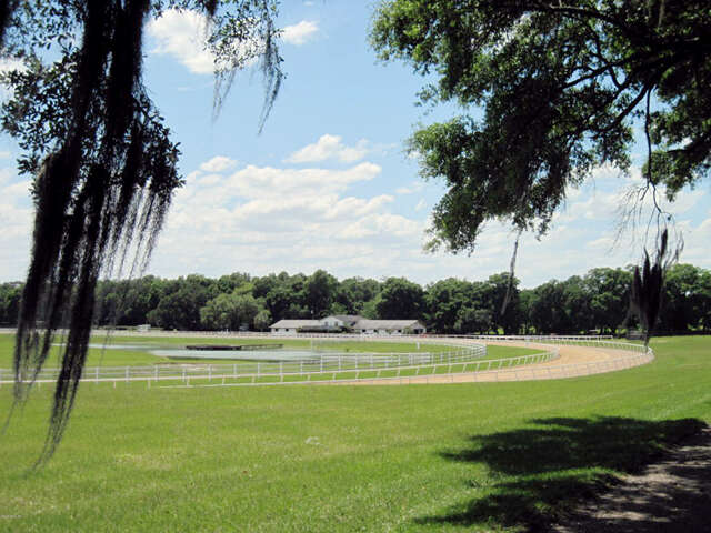 Single Family for Sale at 14500 NW 160 Avenue Williston, Florida 32696 United States