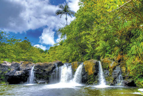 Land for Sale at 27-629 Old Onomea Rd Hilo, Hawaii 96720 United States