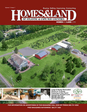 HOMES & LAND Magazine Cover. Vol. 11, Issue 07, Page 20.