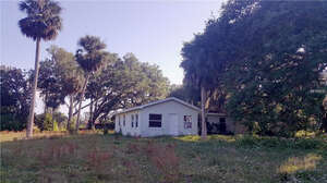 Featured Property in Yalaha, FL 34797