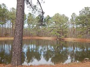 Land for Sale, ListingId:44015611, location: LAKE SPRINGWATER DR Brandon 39042