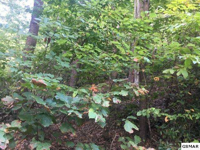 Real Estate for Sale, ListingId:61040820, location: Lot 19 Tanrac Trl Gatlinburg 37738