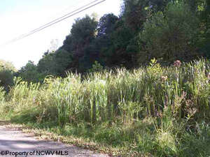 Land for Sale, ListingId:37845664, location: 2A2 Goose Run Road Road Fairmont 26554